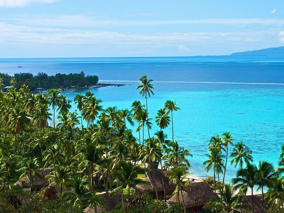 Viajar a Islas: Viajar a Moorea