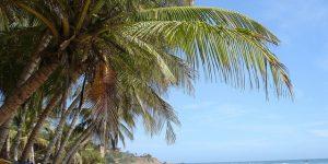 donde queda la isla margarita