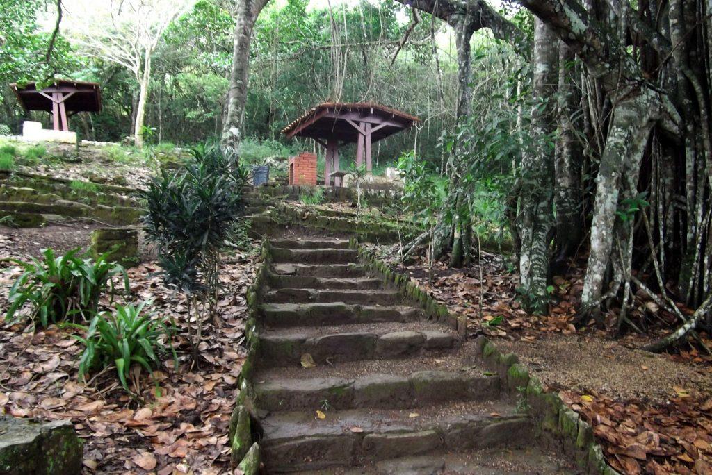 Parque Nacional Cerro Copey Jovito Villalba
