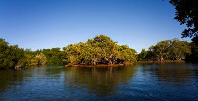 Que es la Laguna de La Restinga