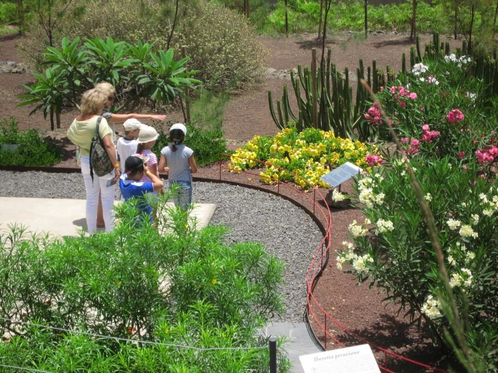 Tenerife con niños: Jardin Venenoso Piramides de Güímar
