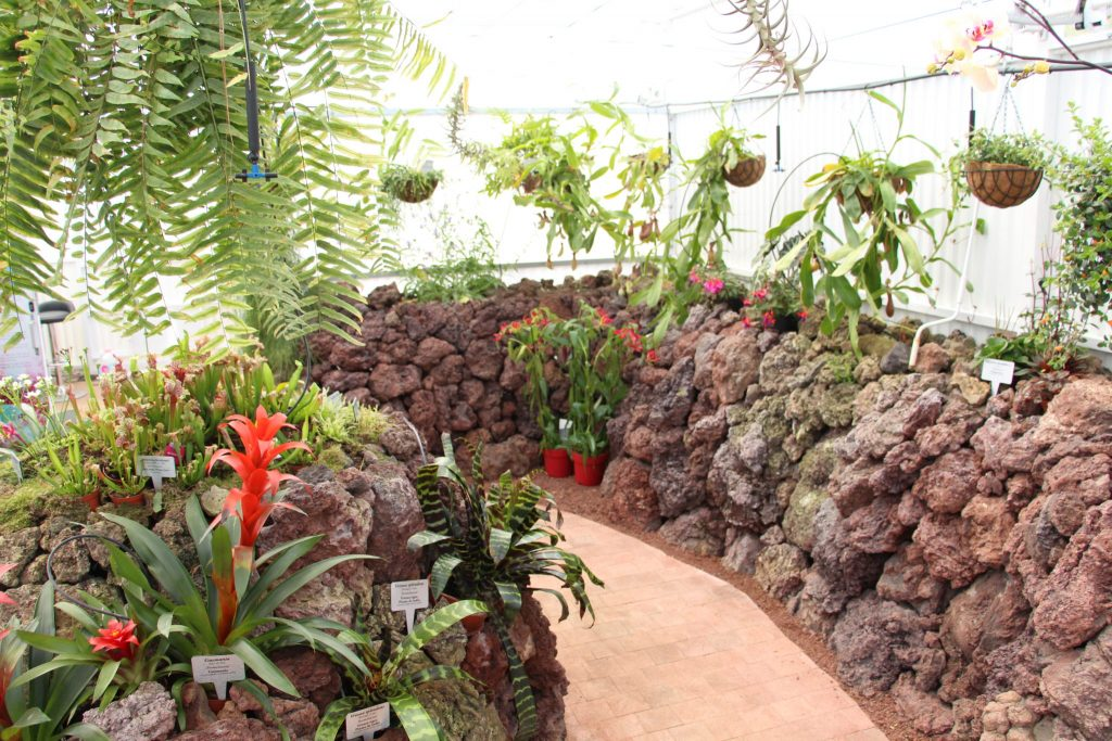 Tenerife con niños: Tropicarium Piramides de Güimar