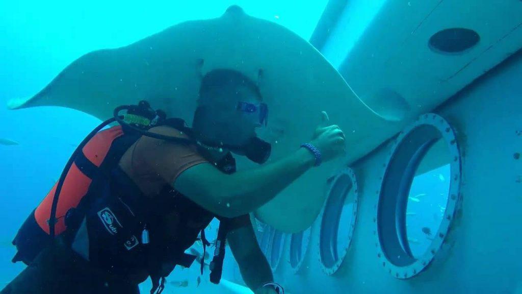 Tenerife con niños: exterior del submarino en inmersión, safari submarino Tenerife