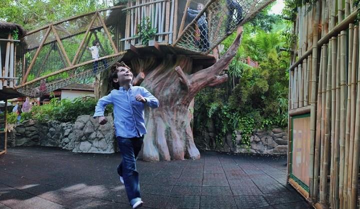Tenerife con niños: kinderlandia loro parque tenerife