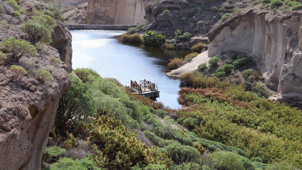 Tenerife con niños: laguna reserva ambiental san blas san miguel de abona