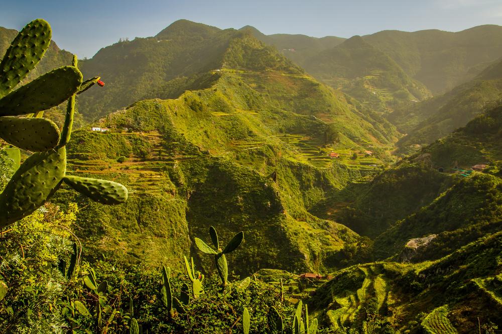 Tenerife con niños: Parque Rural de Anaga Tenerife